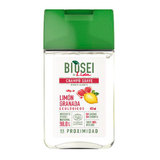 BIOSEI BY LIDA CHAMPU CITRUS GRAN 500 ML